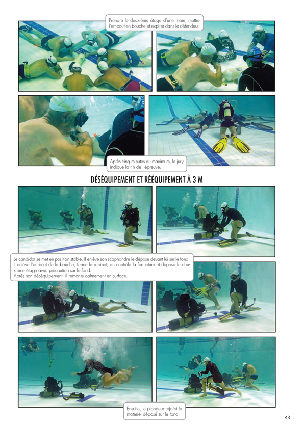 2019-Hippo-251_Page_2